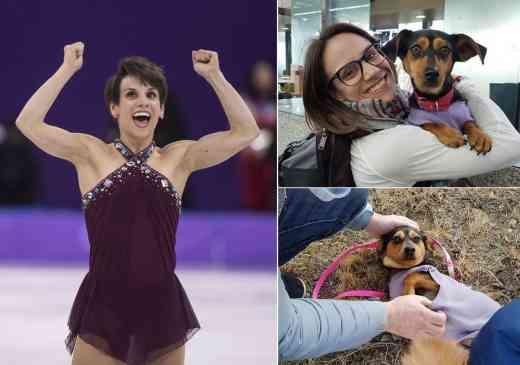 スキー男子アメリカ代表が韓国の「犬工場」から90匹を救出、持ち帰るのはメダルじゃなくて子犬!