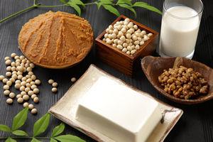 発酵食品のレシピ(菌活のすすめ)