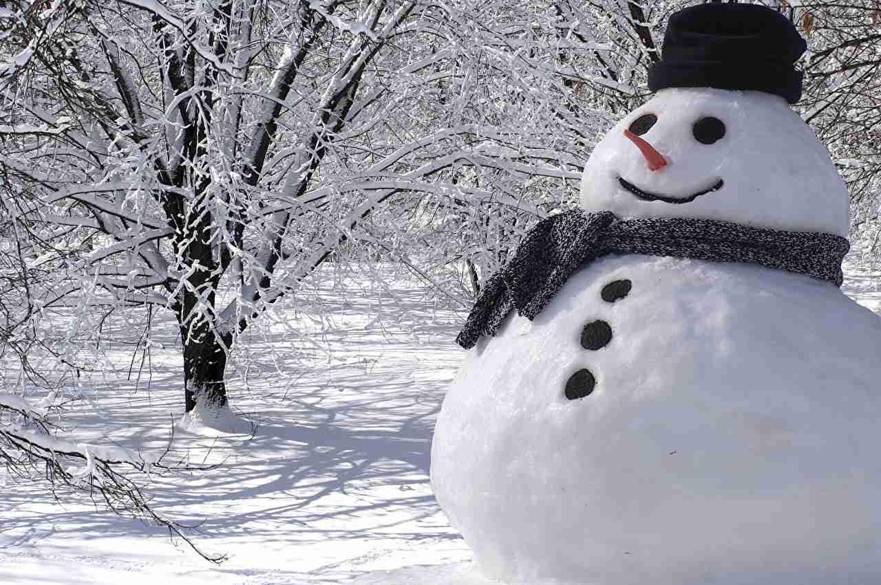 冬季オリンピックの新種目を勝手に考えるトピ