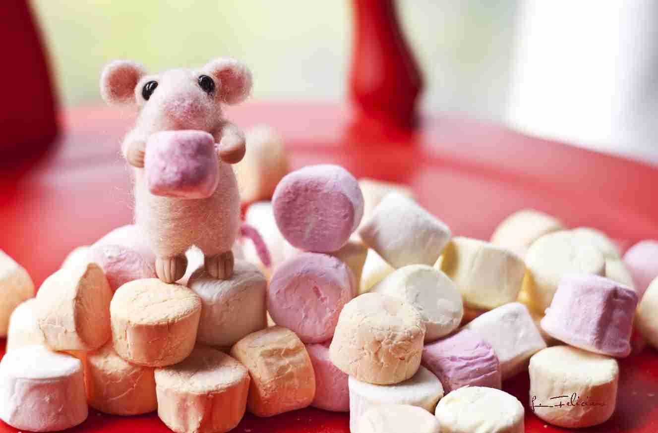 イケア、マシュマロ自主回収 工場にネズミが侵入