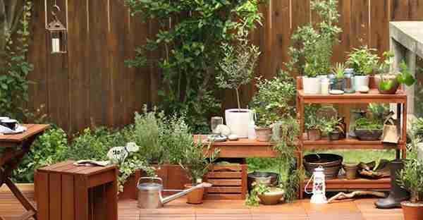 ベランダ菜園、プランター菜園