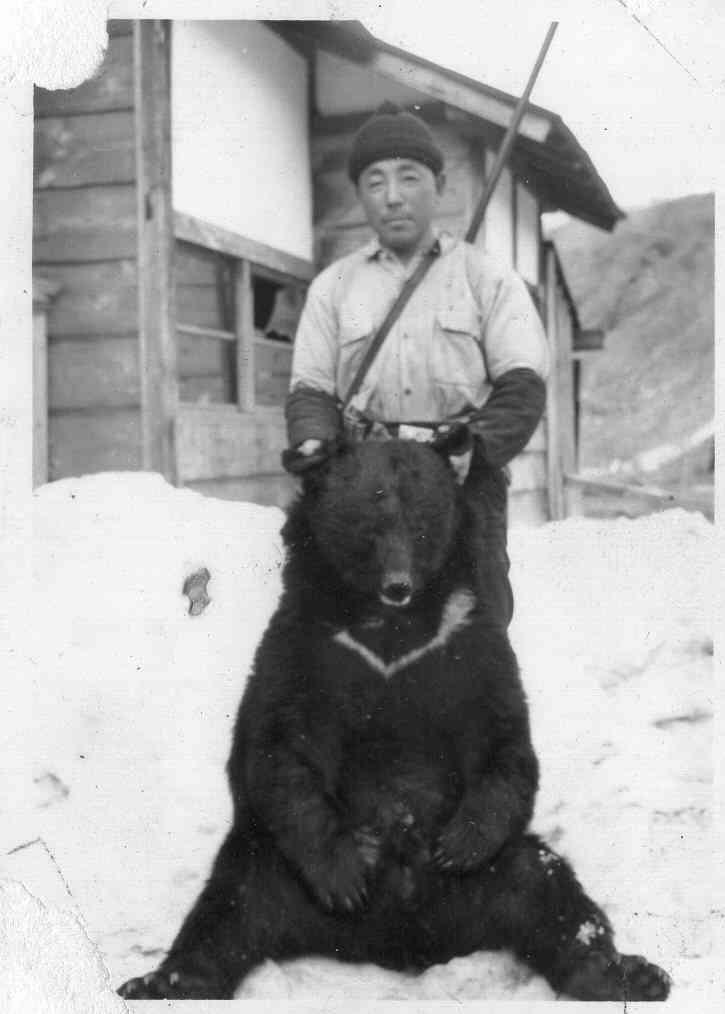 ライオンを射殺しようとしたトロフィーハンター、流れ弾で死亡