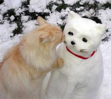 シロフクロウの隣に雪だるまを置いてみたら? 続く展開に、悶絶者続出!