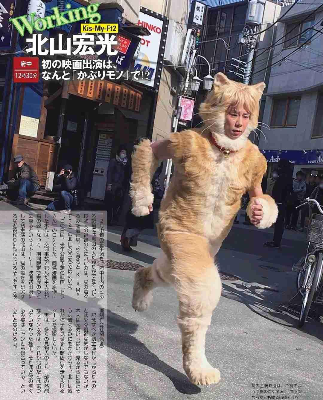 人気漫画『トラさん』が実写映画化、主演はKis-My-Ft2北山宏光