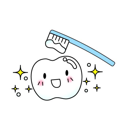 仕事後のお昼休み、歯磨きしますか?
