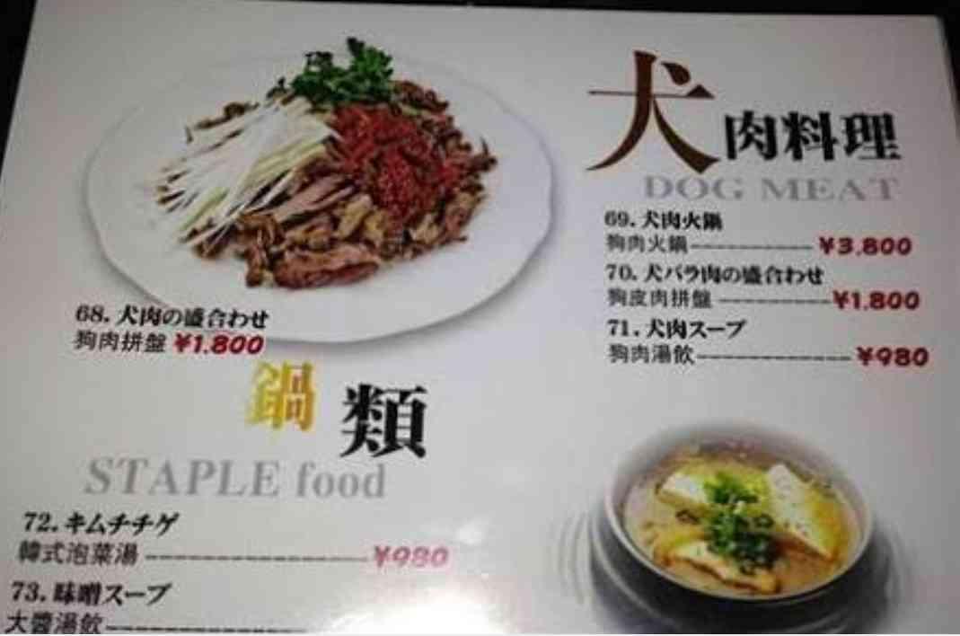 韓国・平昌の犬肉レストラン、五輪開催中のメニュー提供自粛を拒否