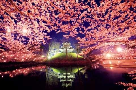 春が恋しい新潟県民の集い