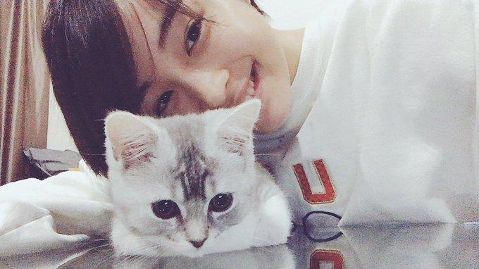 猫目美人が好き(=^ェ^=)