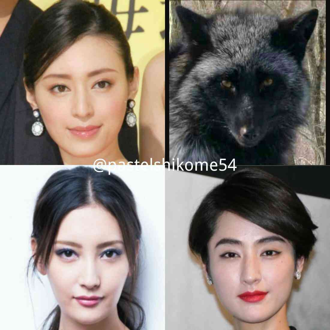 きつね顔美人とたぬき顔美人どっちが好きですか?