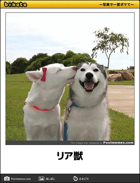 幸せになる画像