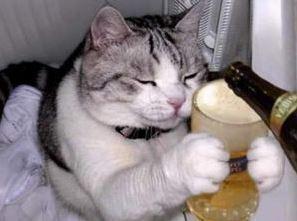 誰か一人酒のお相手をpart3