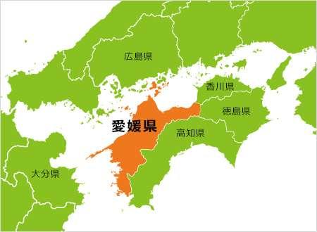 愛媛県の観光スポット教えてくーださーい(*´꒳`*)