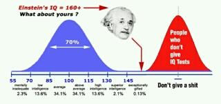 IQ(知能指数)が高い人は身近にいますか?