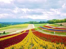 この観光地が所在する都道府県がわかったらプラス