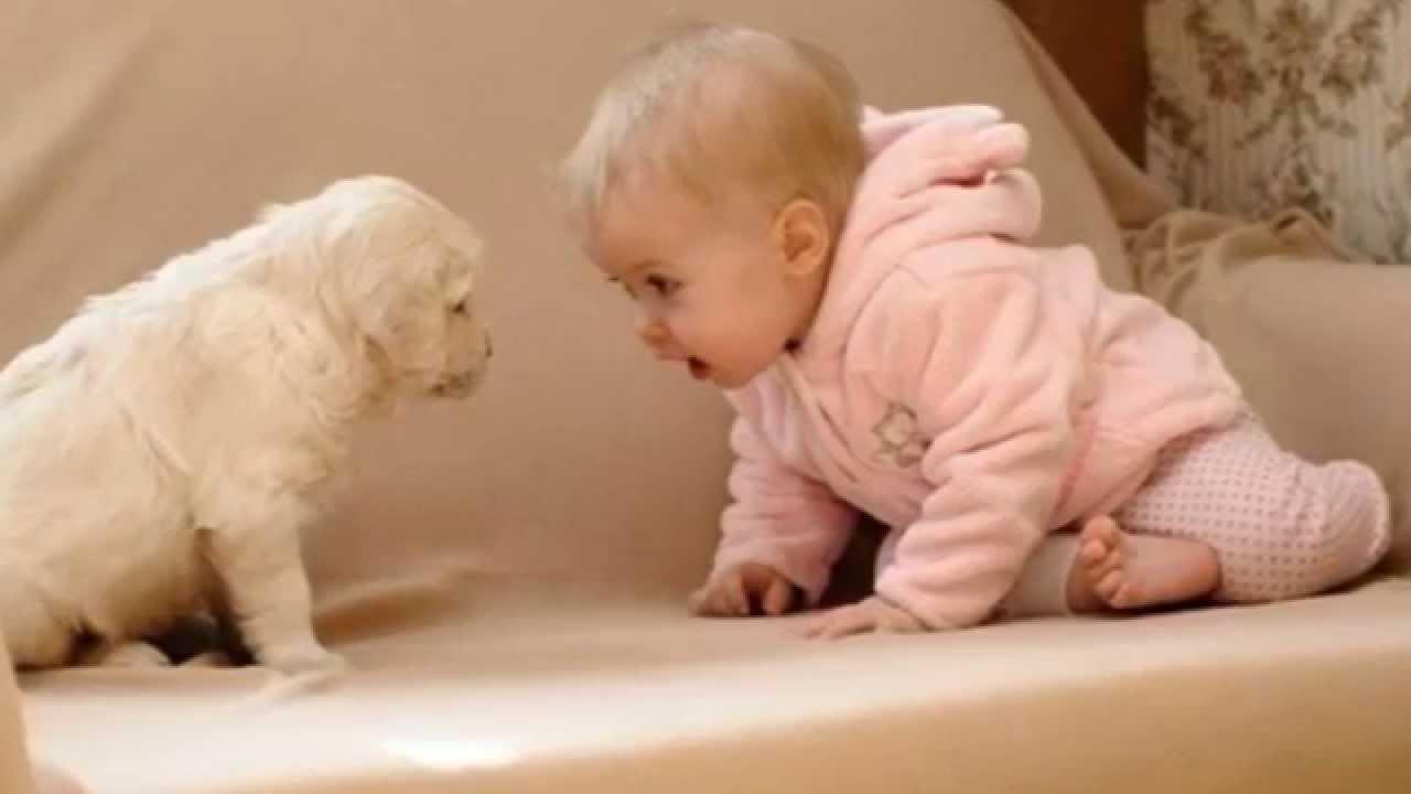 育児の疑問に誰かが答えてくれるトピ