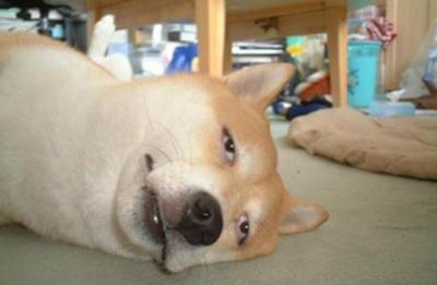 【お仕事してる方限定】まだ月曜日なのにもうグッタリ疲れている人【パートの方も】