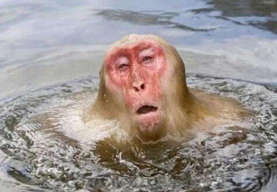 水も滴るいい男が見たい!