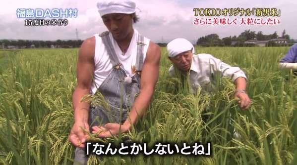 なに米が好きか選手権!