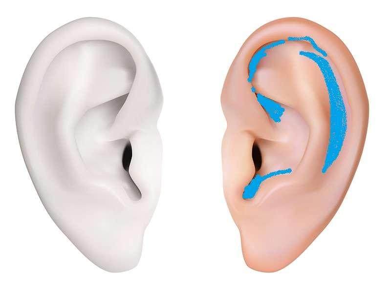 耳はいつ洗ってますか?