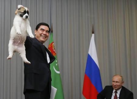 有名人の愛犬家
