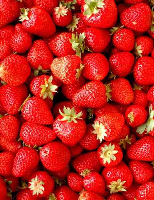 どんなイチゴを買ってますか?(好きな銘柄など)
