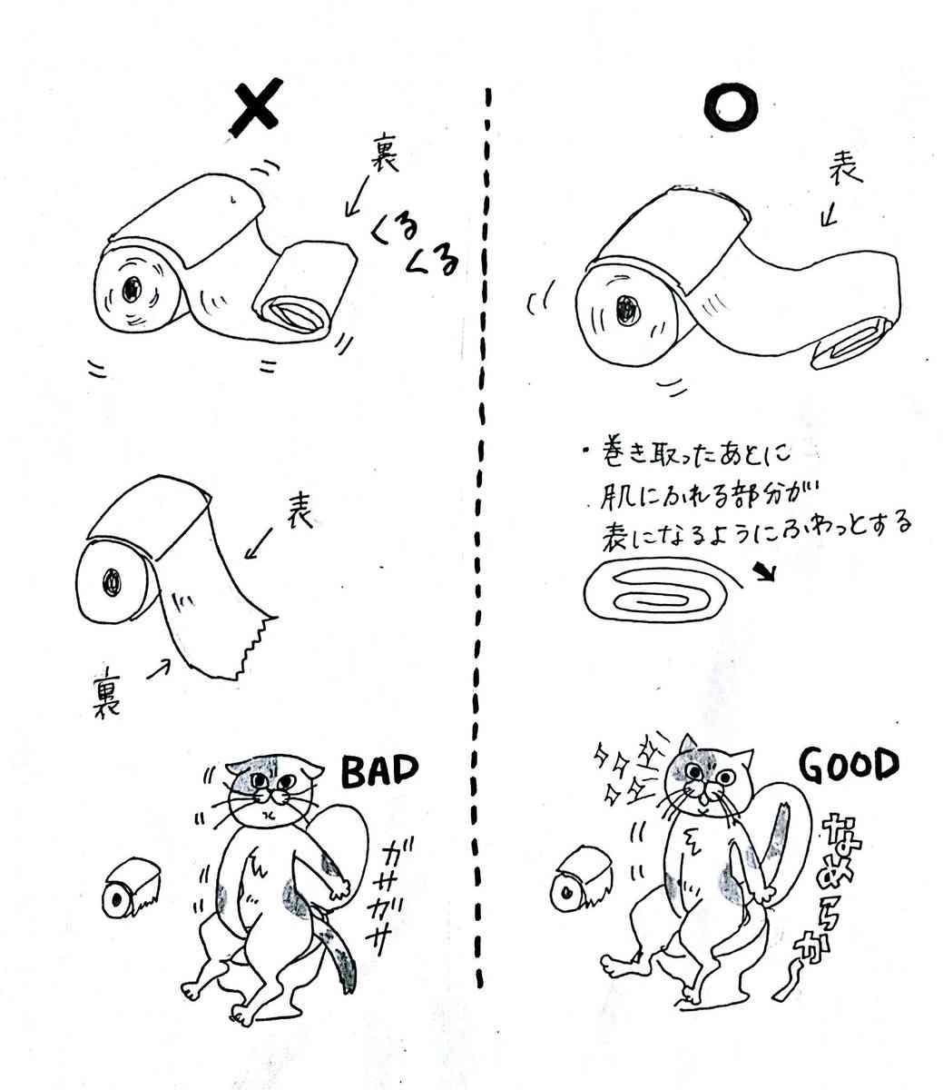 意外なトイレ習慣