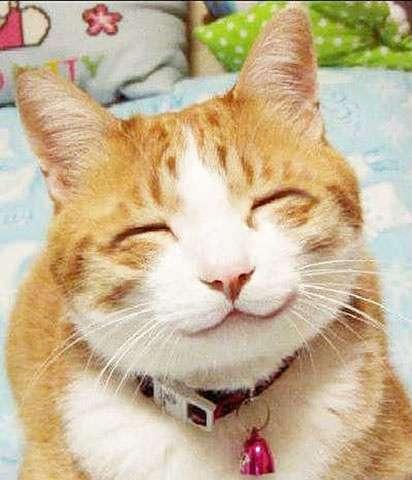 憧れる笑顔