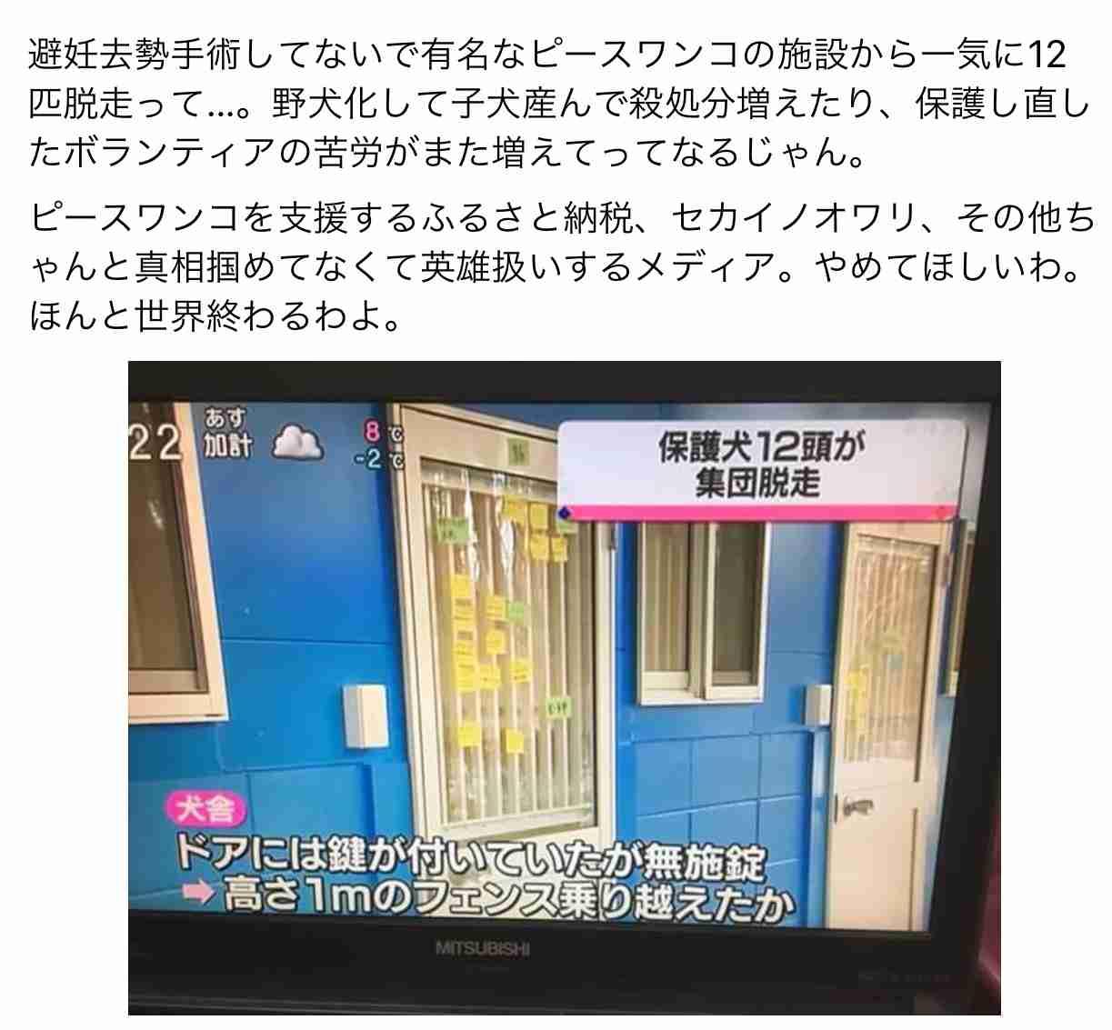 犬や猫の「繁殖業者を免許制に」 浅田美代子さんが環境相に要望
