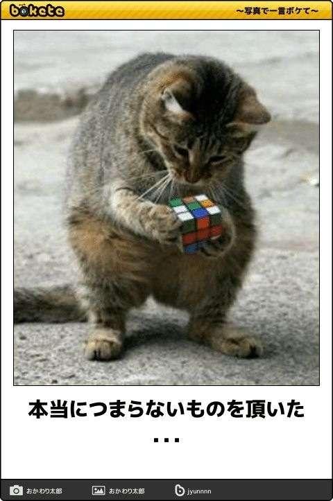 ルービックキューブ出来たことありますか?