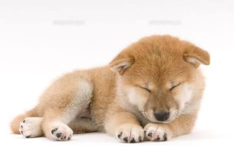 眠たいとき、あるある。