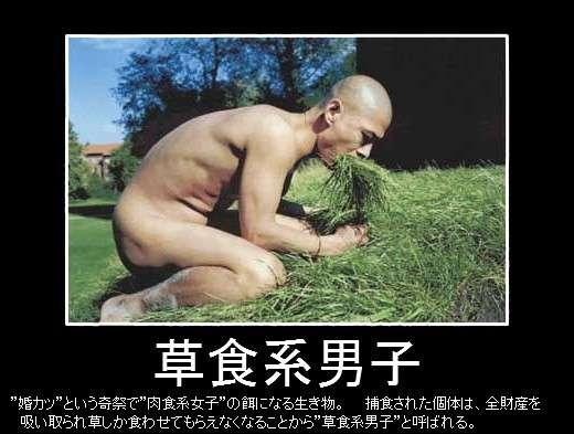 彼氏、旦那が草食系
