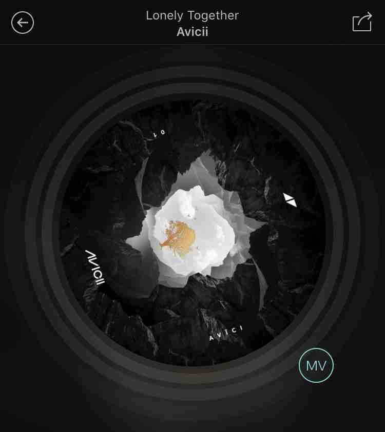 【訃報】EDMブームの功労者 スウェーデン出身DJ、アヴィーチーが28歳の若さで死去