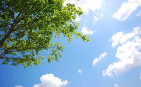 新緑の季節を楽しみにしている方、お話しましょう