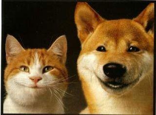 【画像】目が笑ってない笑顔って?【求む】