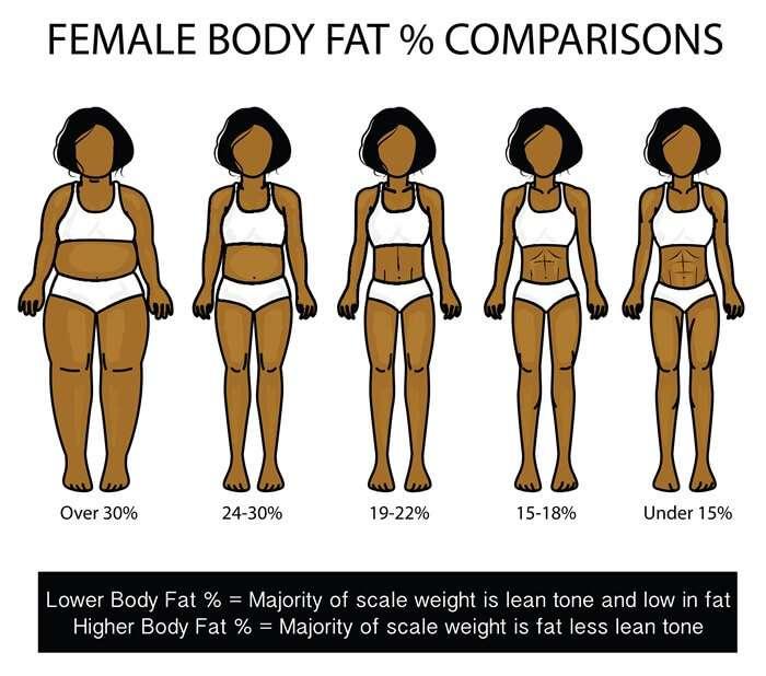 30日間体脂肪率を晒してダイエットにはげむトピ
