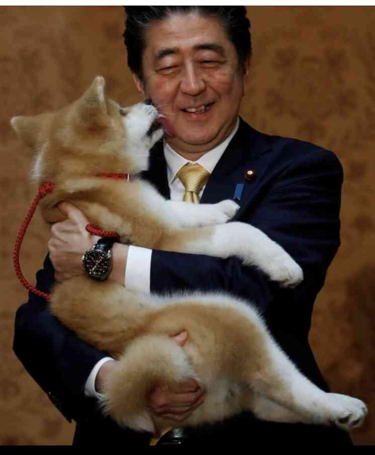 ザギトワが秋田犬マサルと念願の対面 安倍首相と昭恵夫人も立ち会う
