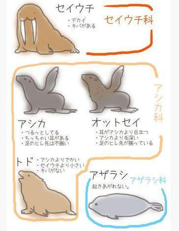 浜崎あゆみ、「アルバムまだ?」トレ合宿と称したバカンスに大ブーイング