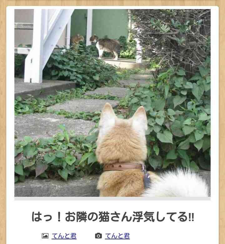 彼氏の浮気現場を目撃!