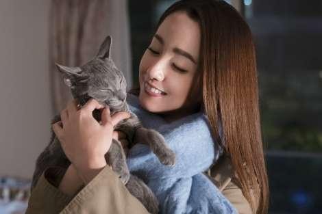 柴咲コウのすっぴんが「きれいすぎる」 猫と美女のコラボにファン大興奮