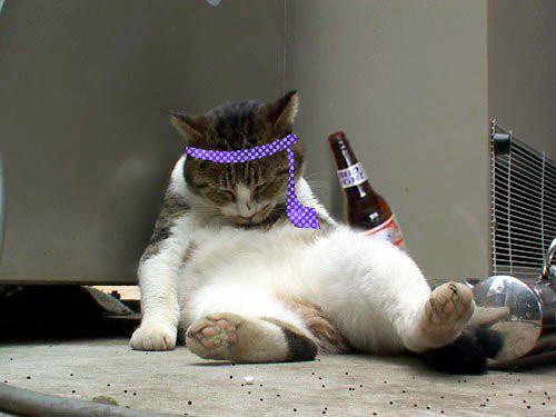 私、酔っ払ってるなと気づく瞬間