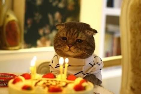 誕生日誰からも祝ってもらえなかった人!