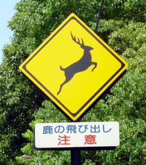 田舎にあって東京にないもの