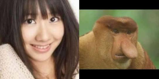 動物に似ている有名人