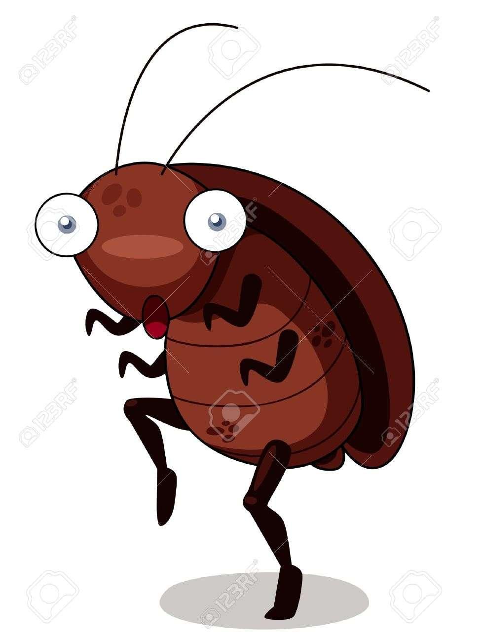 虫が平気な人