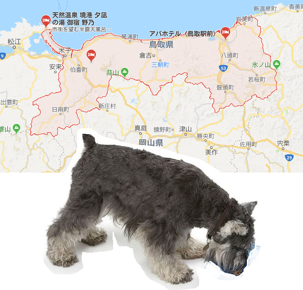 鳥取県あるある
