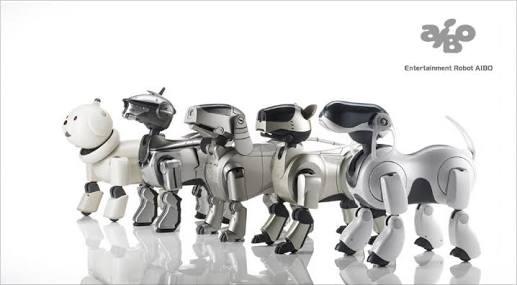 「aibo」生産台数が1万1111台を突破 発売から約3カ月で