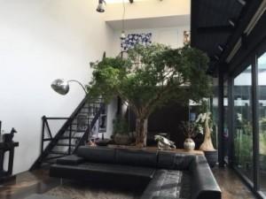 佐々木希、「すごい素敵な家!」プライベートな空間を公開で歓喜の声
