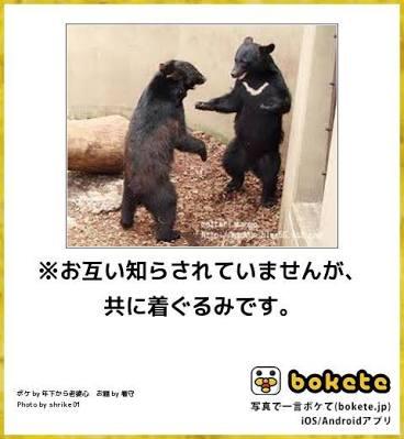ビビりな人~!