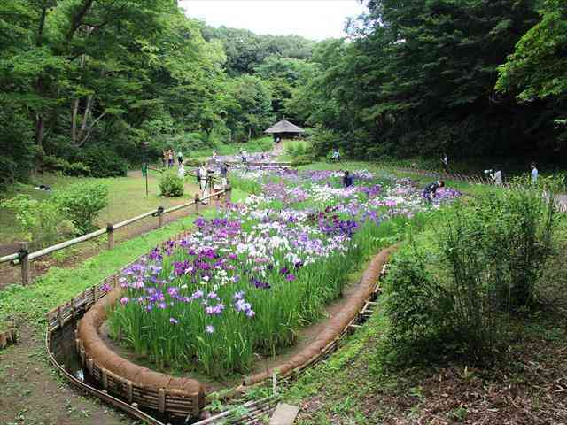 【関東版】雨の日でも楽しめる観光地