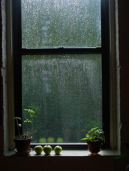 梅雨あるある